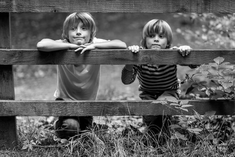 cute brothers looking through fence
