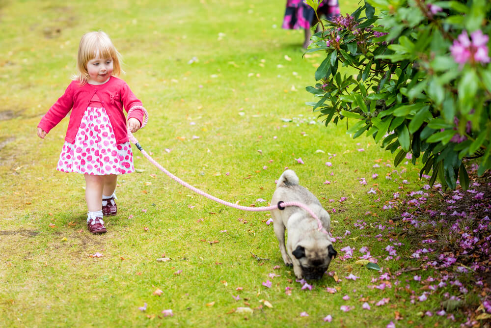 Cute girl taking dog for a walk
